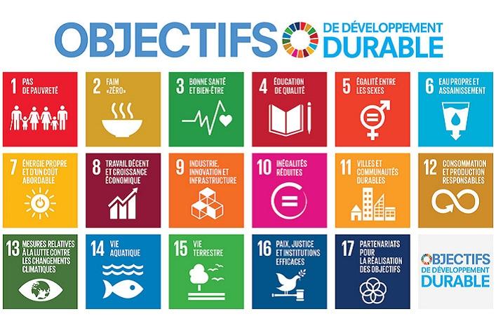 90 MINUTES POUR LES SDG's | Objectifs de Développement Durable : je les (re)découvre et les intègre dans mon entreprise !