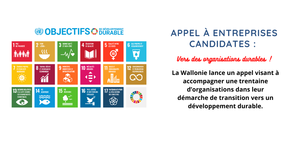 Appel à candidats : vers des organisations durables !