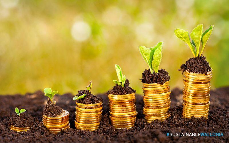 Développement durable : risque ou opportunité pour la croissance internationale de l'entreprise ?